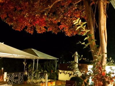 agva-sonbahar-riverangel-agva-otelleri
